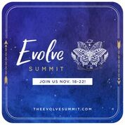 The Evolve Summit